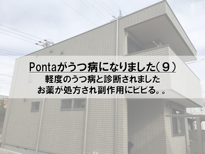 Pontaがうつ病になりました(9)_軽度のうつ病と診断されました_お薬が処方され副作用にビビる。。
