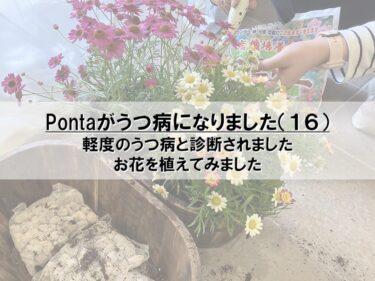 Pontaがうつ病になりました(16)
